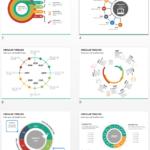 Multicolor Circular Timeline